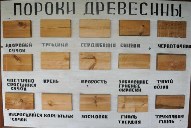 на сорт доски влияют пороки древесины
